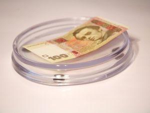 avito monetn prozr krug 300x226 - Монетница желтая